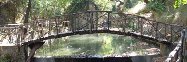 Парк Родини на острове Родос. Долина с вековыми деревьями